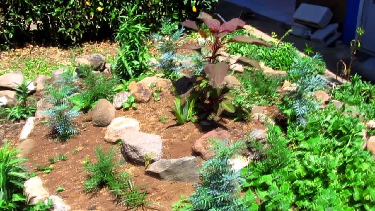 Espiral de plantas arom ticas y medicinales ina 1 youtube - Jardines con plantas aromaticas ...