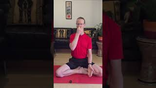 Day 2 of 7 Nadi Sodhana Pranayama   Cleansing Breath 5min