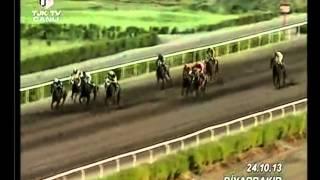 Diyarbakır Hipodromu (8. Yarış Günü) 6. Koşusu
