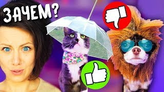 Download ТОП 5 безумных ТОВАРОВ ЗОНТ для собаки МАССАЖ ЩЁК для кошки Петшопинг для ЖИВОТНЫХ с Алиэкспресс Mp3 and Videos