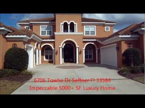 6706 Towhe Dr Seffner Fl 33584 Impeccable 5000sf Luxury Tampa Bay