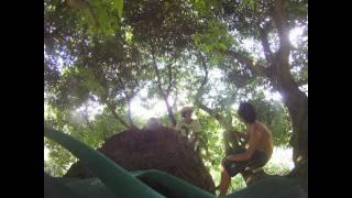 Tahiti Summer 10