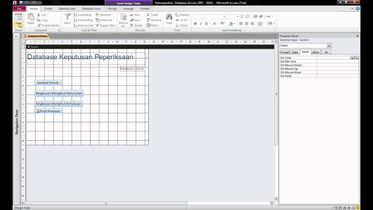 MS Access 2010- Change from Design View to Form View avi