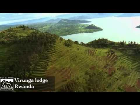 Virunga Lodge  | Gorilla Trekking