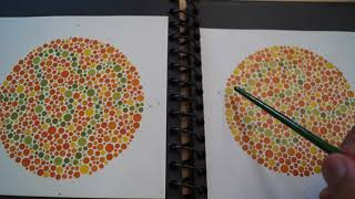 Red Green Color blindness test -Ishihara test book pattern page using red filter analysis- 5th video
