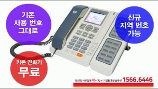 사무실전화 역시 SK 기업인터넷전화
