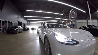 Tesla Delivery Experience