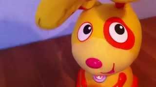 """Макс(прятки) Моя первая собака в интернет-магазине """"Голдик"""" г.Анапа"""