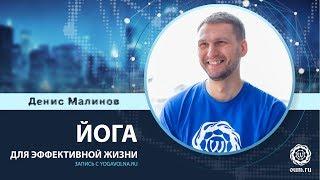 Йога для эффективной жизни (запись с yogavolna.ru)