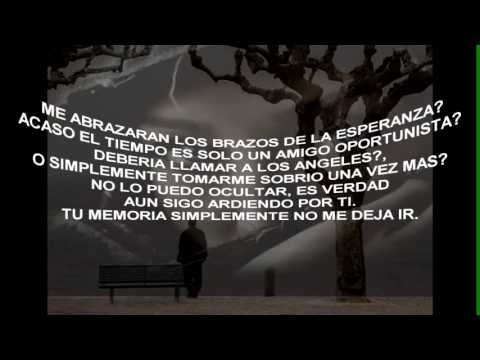 Richard Marx - Until I Find You Again .