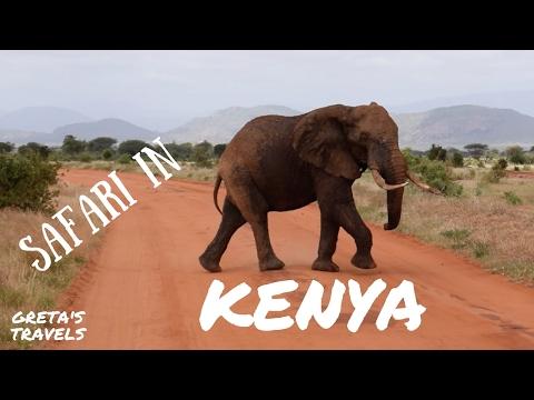 SAFARI IN KENYA: Tsavo East National Park