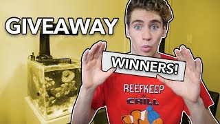 I'm GIVING AWAY MORE FREE FISH TANKS! (**GIVEAWAY WINNERS**)