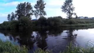 Прогулка со спиннингом или ловля шуки на реке