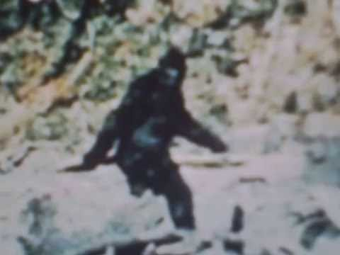 BIGFOOT=New DNA Evidence