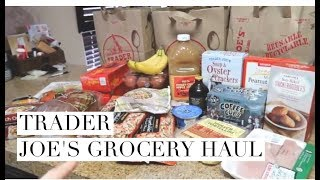 TRADER JOES GROCERY HAUL / Daily Vlog