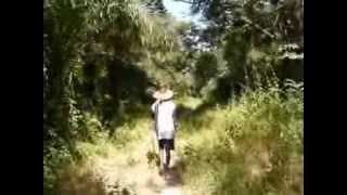Repeat youtube video La foret qui borde le village de Finthiock en Casamance