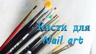 Кисти для дизайна ногтей, виды и уход. Часть 1