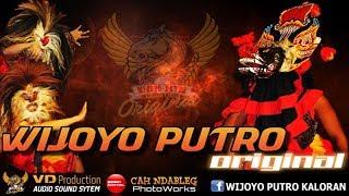 WIJOYO PUTRO ORIGINAL Patih Singo Kumbang, Bujang Ganong, Bantengan Maheso Suro Live Wates 2017