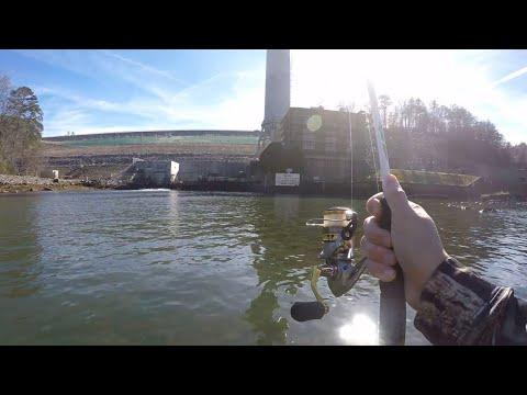 Winter Trout Fishing The Toccoa River (Blue Ridge, GA)