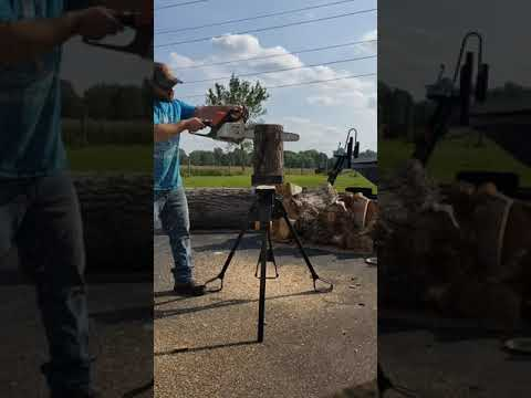 Huntington IT Chainsaw Carving