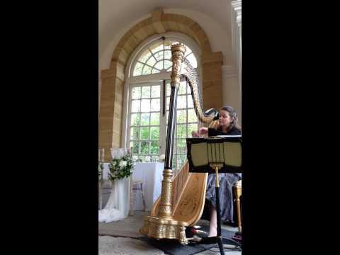 Devon based wedding harpist - Make you feel My Love