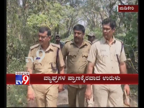 2 Tigers Found Dead in Madikeri, Officials Conduct 'Operation Snares' in Nagarhole