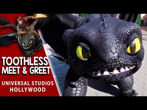 Toothless Meet & Greet from How To Train Your Dragon | Universal Studios Hollywood