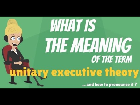 What is UNITARY EXECUTIVE THEORY? What does UNITARY EXECUTIVE THEORY mean?