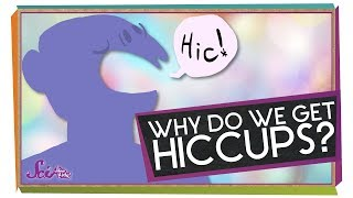 Why Do We Get Hiccups?