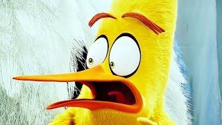 Angry Birds 2 в кино — Сцена из мультфильма #2 (2019)