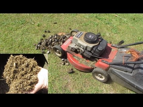 Making Manure Mulch For The Garden, The Easy Way..