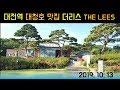[일상 vlog] 피아노학원장,일상,점심,벚꽃,대청댐,카페,데이트 브이로그