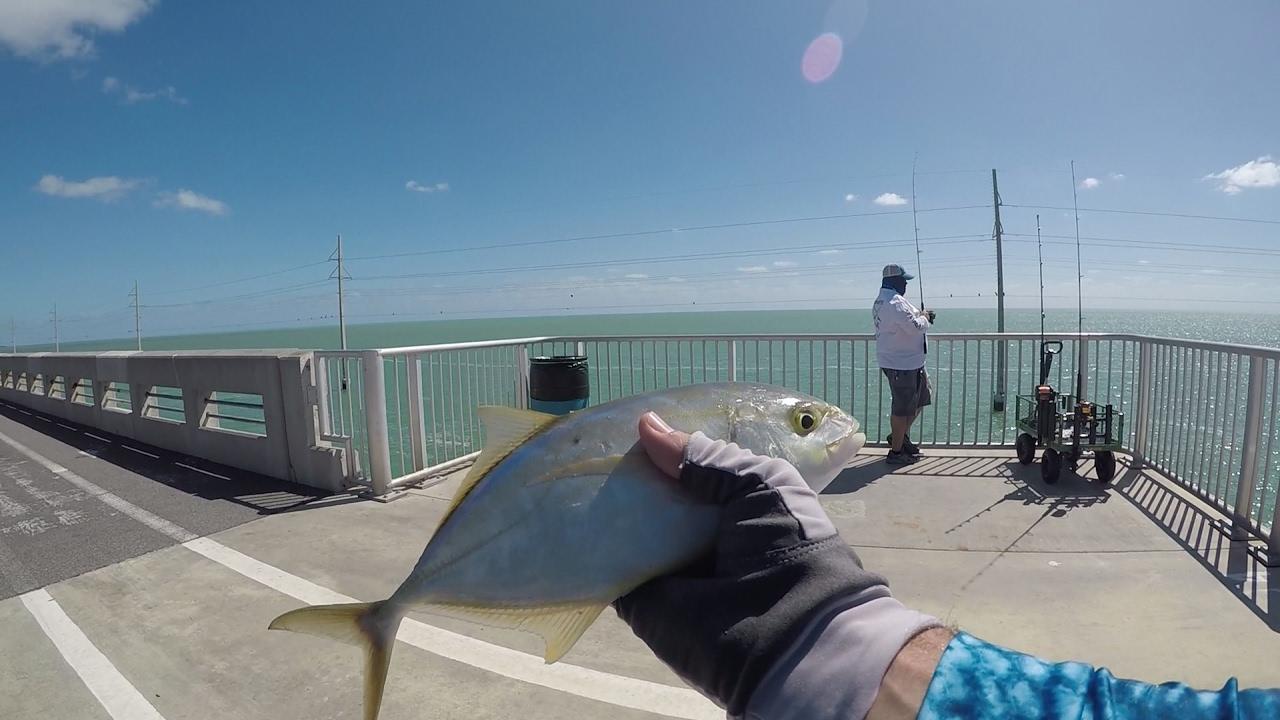 Fishing the florida keys long key bridge youtube for Florida keys bridge fishing