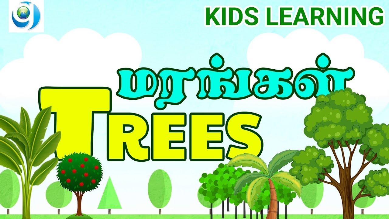 Kids learning Tree Names Learn names of trees preschool kids மரங்களின்  பெயர்கள் கற்க