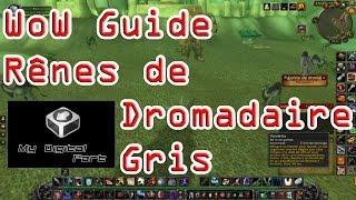 WoW Guide : Rênes de dromadaire gris