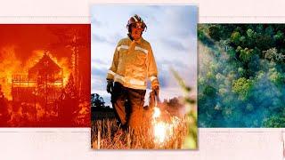 Wie Feuer unsere Wälder schützen kann