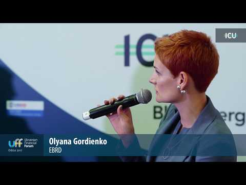 Ukrainian Financial Forum 2017 - 5th panel 2 - Corporate governance and financial sector compliance