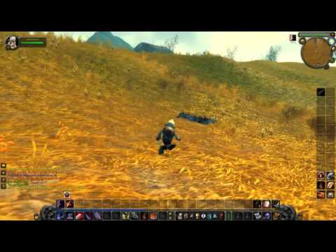 (Twitch stream) Playing World of Warcraft on Private Server #9