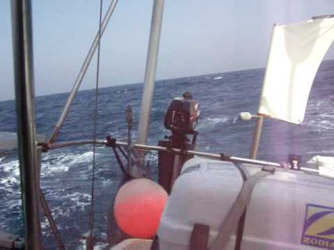 Sailing Northboud In The Red Sea, Coast of Sudan