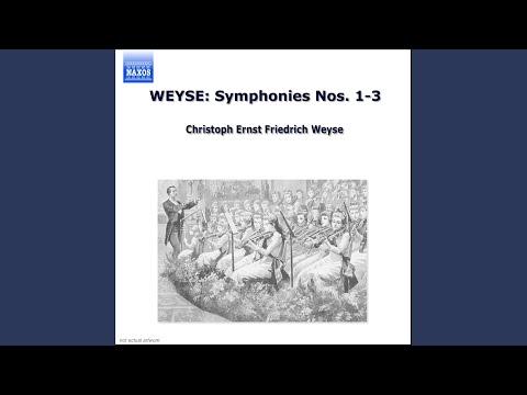 Symphony No. 1 In G Minor, DF 117: I. Allegro Con Spirito