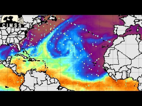 """The Cape Verde Islands are producing """"von Kármán vortex streets"""" and pulses on the MIMIC map"""