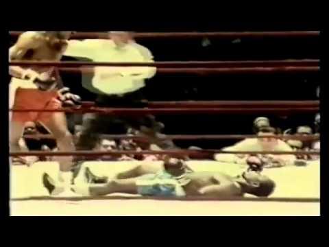 Download 50 Best Knockouts Melhores Nocautes de Boxe