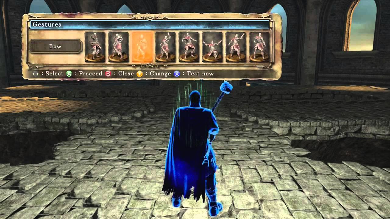 blue sentinel arena