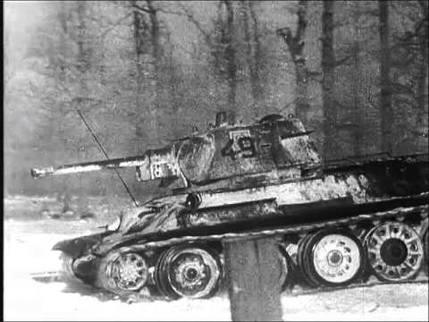 Survivors of Stalingrad 2 of 3