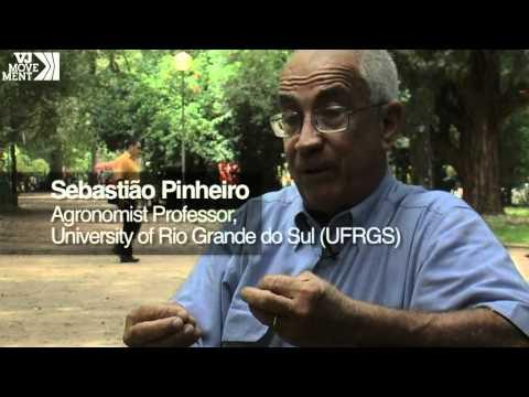 Biofuels in Brazil: Alternative or Disaster?