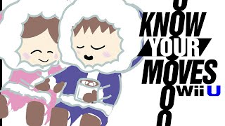 Ice Climbers: Why They Became a GHOST of Smash Brothers Past! - Know Your Moves! (Smash Bros.)