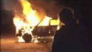 Free Rainer - offizieller Trailer