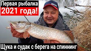 Первая рыбалка в 2021 году Щука и судак на спиннинг с берега зимой на Crazy Fish Arion 762 MLT