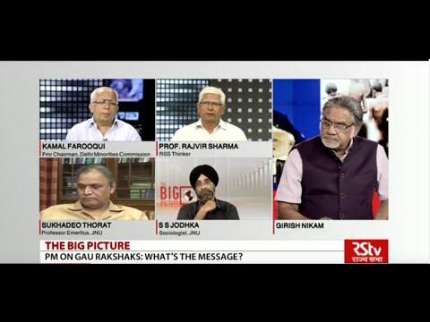 The Big Picture - PM Narendra Modi on Gau Rakshaks: What's the message?