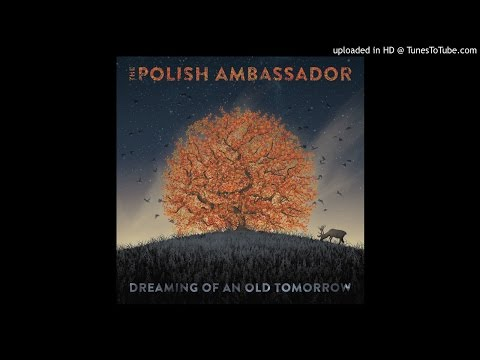 The Polish Ambassador - Tornado (Ft. Matisyahu)